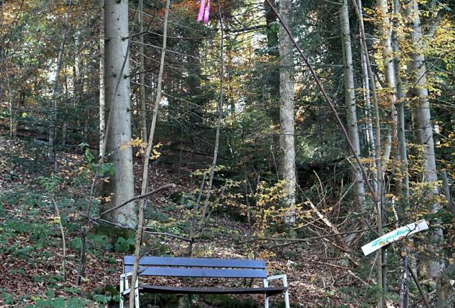 Waldlustweg2.jpg